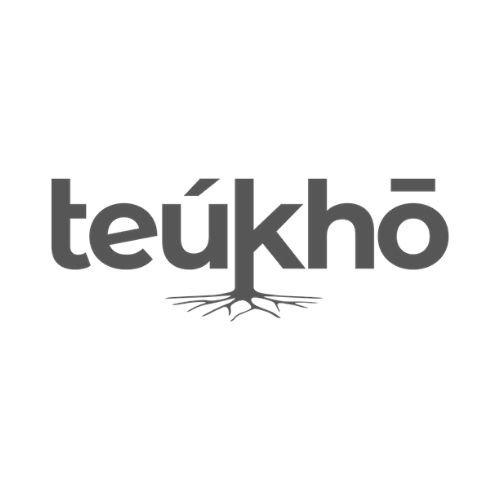 Teukho Eidos Marketing FVG
